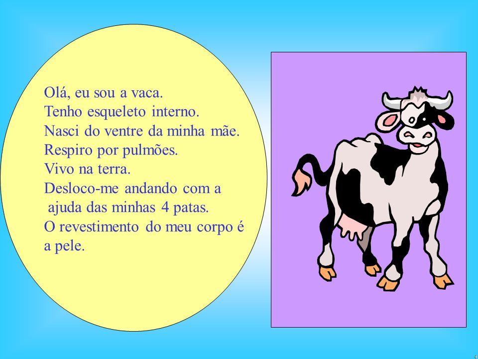 Olá, eu sou a vaca. Tenho esqueleto interno. Nasci do ventre da minha mãe. Respiro por pulmões. Vivo na terra.