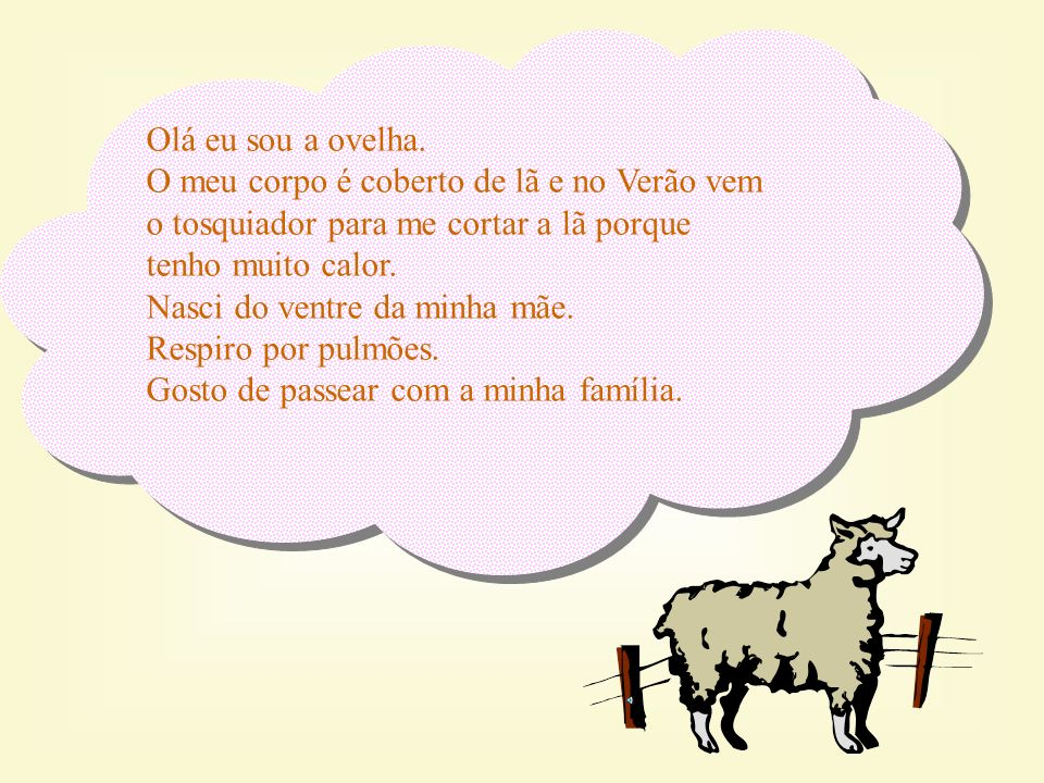Olá eu sou a ovelha.O meu corpo é coberto de lã e no Verão vem o tosquiador para me cortar a lã porque tenho muito calor.
