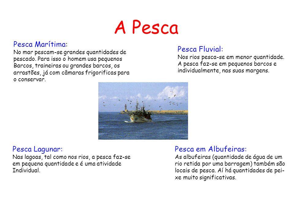 A Pesca Pesca Marítima: Pesca Fluvial: Pesca Lagunar: