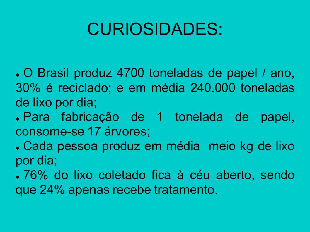 CURIOSIDADES:O Brasil produz 4700 toneladas de papel / ano, 30% é reciclado; e em média 240.000 toneladas de lixo por dia;