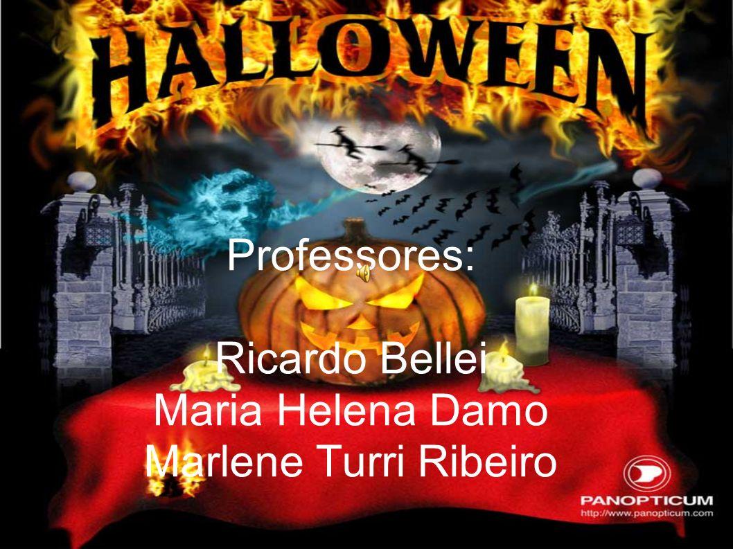 Professores: Ricardo Bellei Maria Helena Damo Marlene Turri Ribeiro