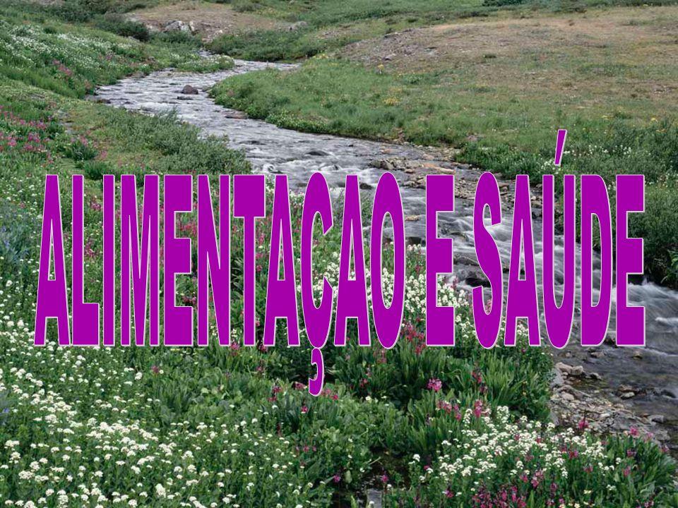 ALIMENTAÇAO E SAÚDE