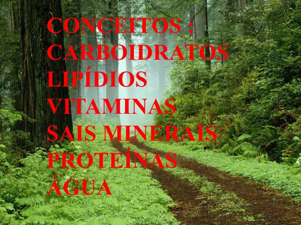 CONCEITOS : CARBOIDRATOS LIPÍDIOS VITAMINAS SAIS MINERAIS PROTEÍNAS ÁGUA