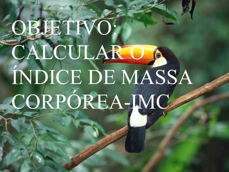 OBJETIVO: CALCULAR O ÍNDICE DE MASSA CORPÓREA-IMC