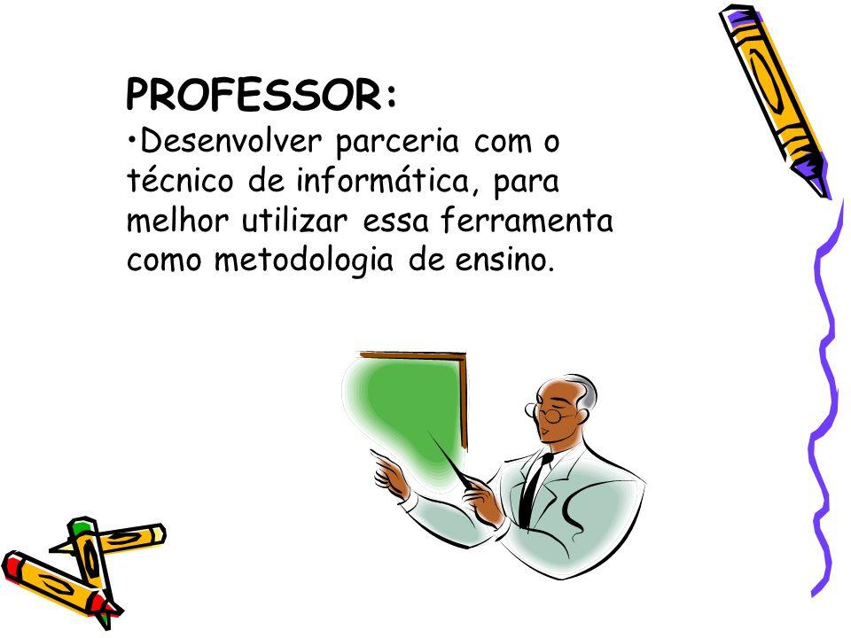 PROFESSOR:Desenvolver parceria com o técnico de informática, para melhor utilizar essa ferramenta como metodologia de ensino.