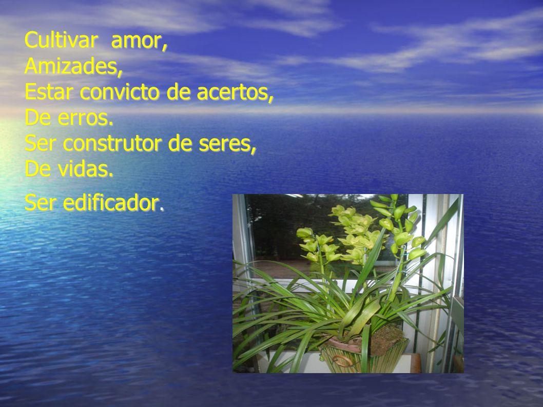 Cultivar amor, Amizades, Estar convicto de acertos, De erros