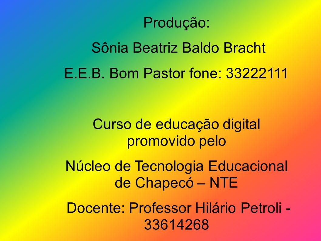 Sônia Beatriz Baldo Bracht E.E.B. Bom Pastor fone: 33222111