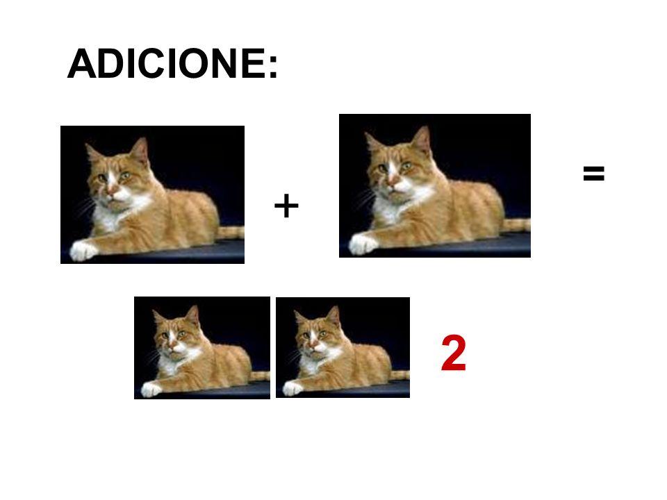 ADICIONE: = + 2