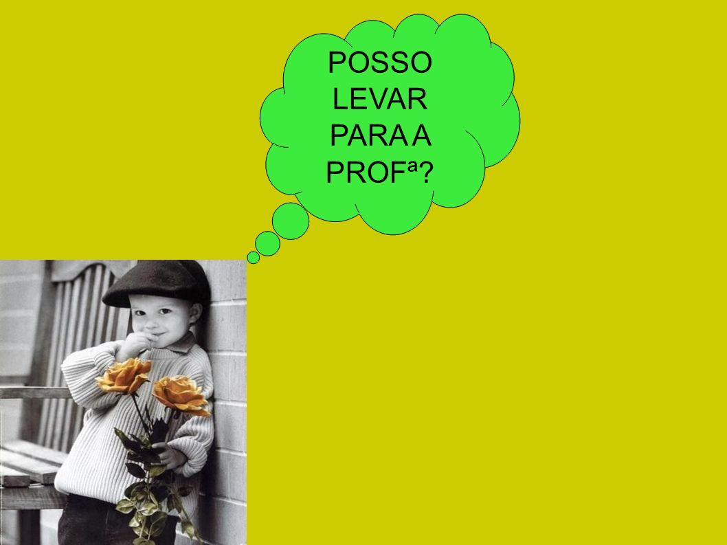 POSSO LEVAR PARA A PROFª