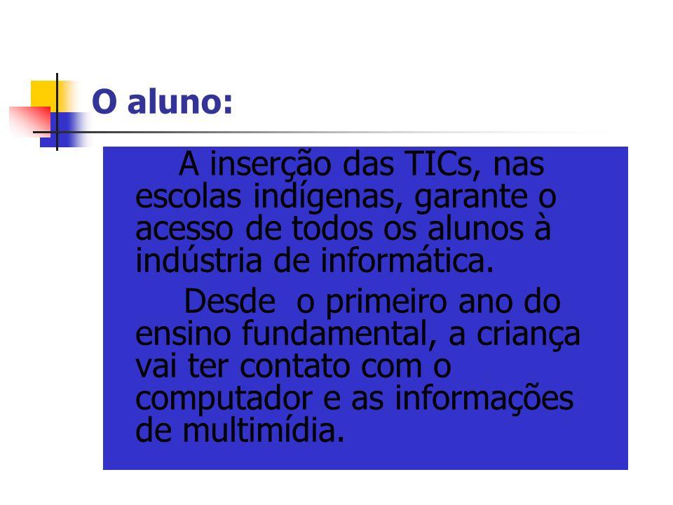 O aluno: A inserção das TICs, nas escolas indígenas, garante o acesso de todos os alunos à indústria de informática.