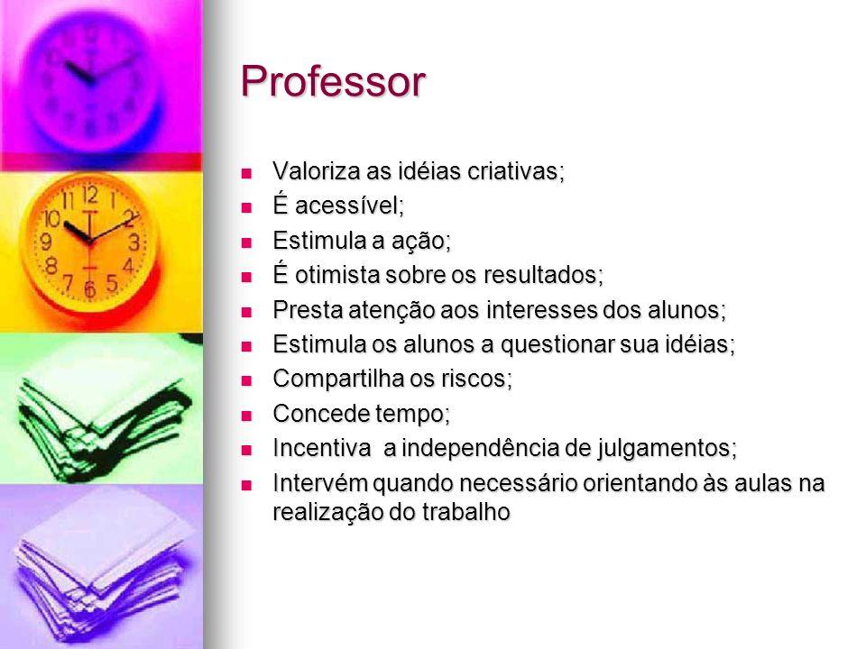 Professor Valoriza as idéias criativas; É acessível; Estimula a ação;