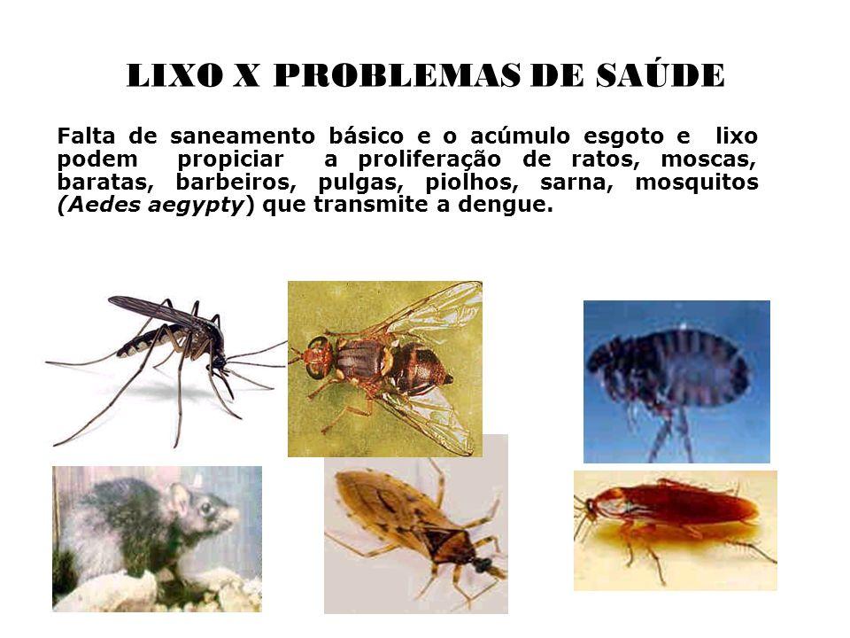 LIXO X PROBLEMAS DE SAÚDE