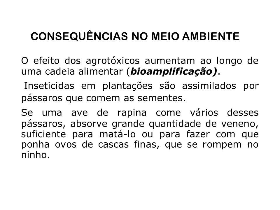 CONSEQUÊNCIAS NO MEIO AMBIENTE