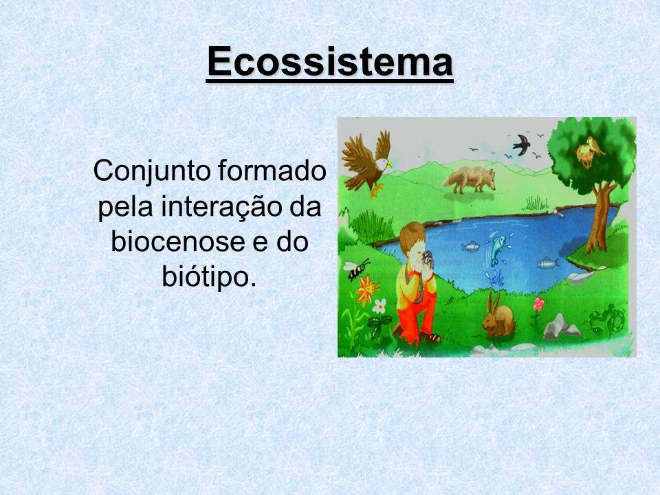 Conjunto formado pela interação da biocenose e do biótipo.