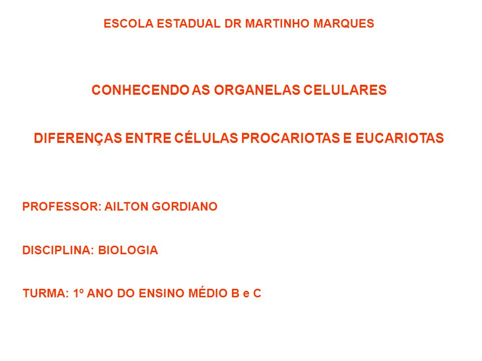 CONHECENDO AS ORGANELAS CELULARES
