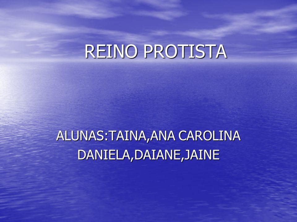 ALUNAS:TAINA,ANA CAROLINA DANIELA,DAIANE,JAINE