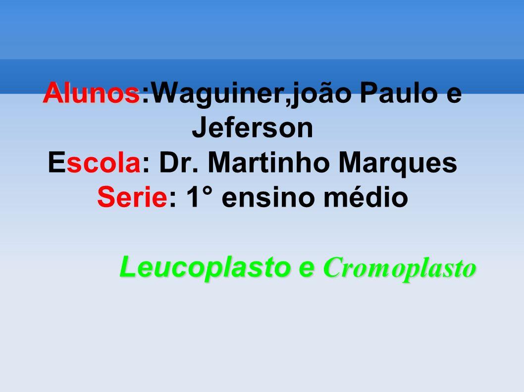 Alunos:Waguiner,joão Paulo e Jeferson Escola: Dr