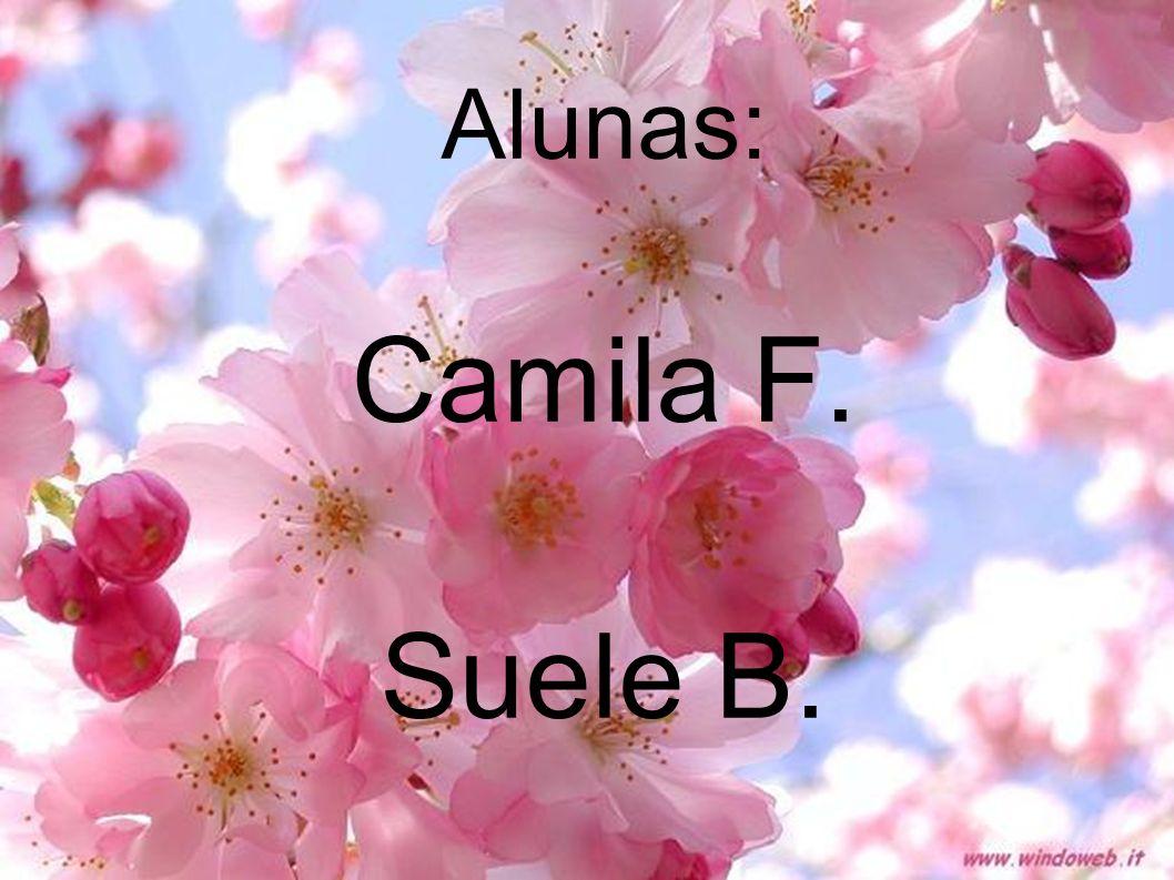 Alunas: Camila F. Suele B.
