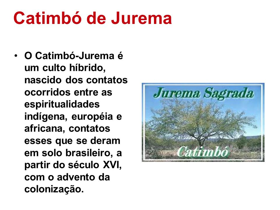 Catimbó de Jurema
