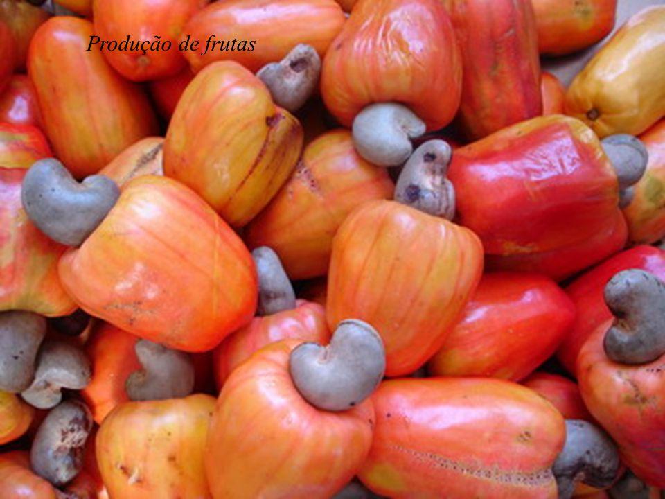 Produção de frutas
