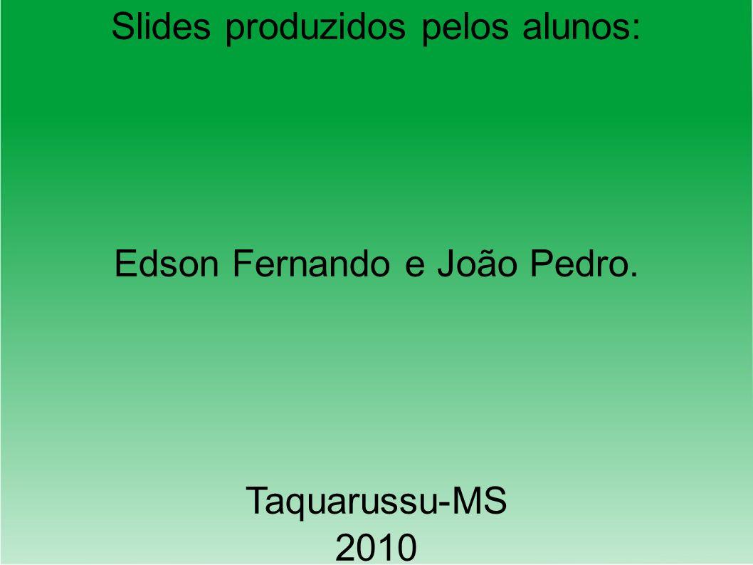 Slides produzidos pelos alunos: