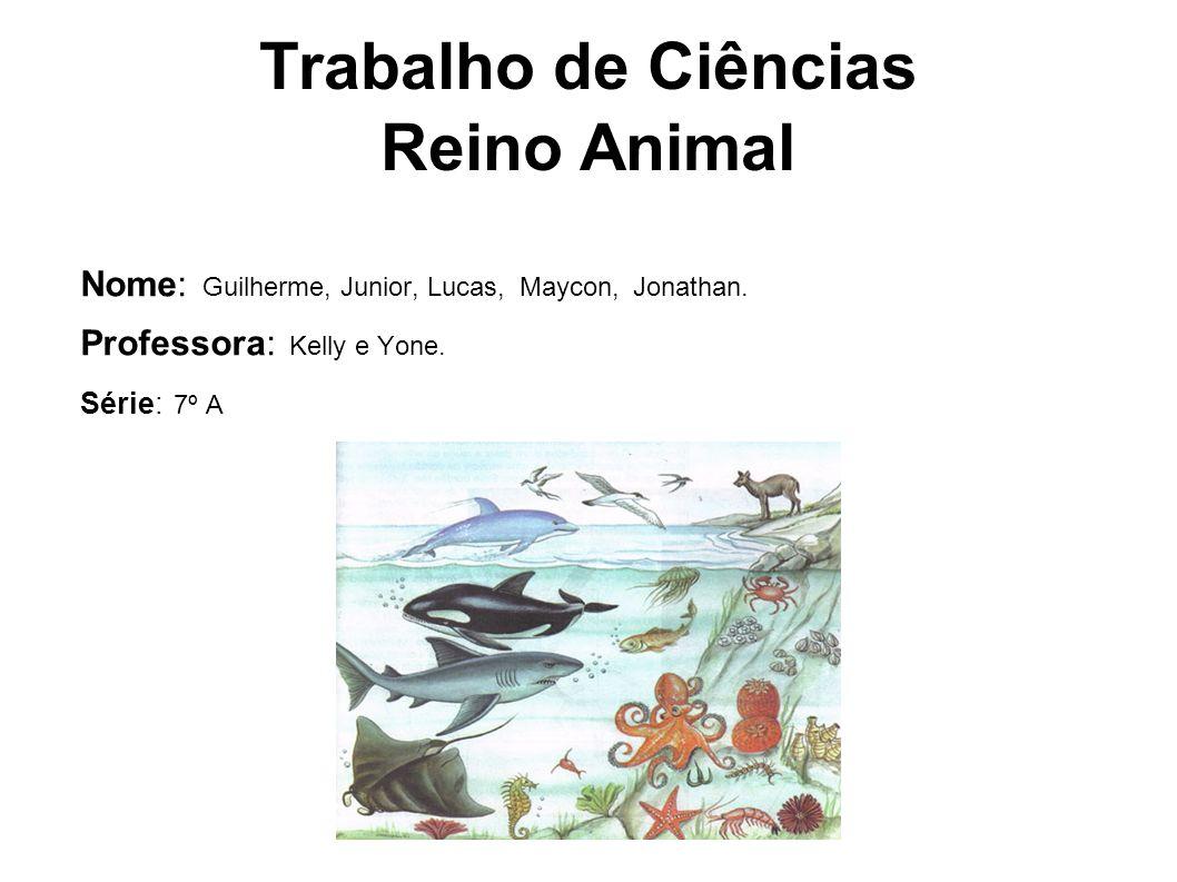 Trabalho de Ciências Reino Animal