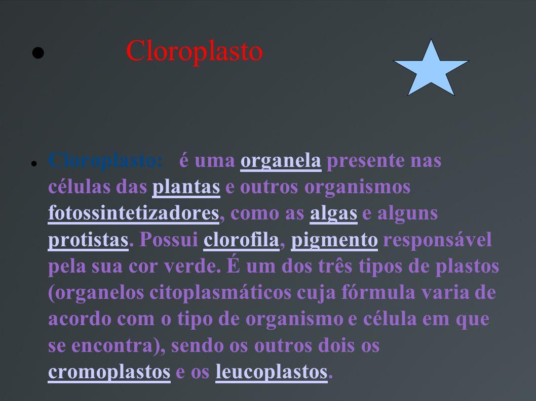 Cloroplasto