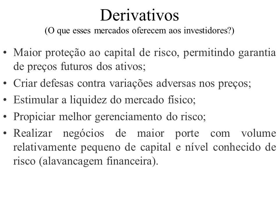 Derivativos (O que esses mercados oferecem aos investidores )