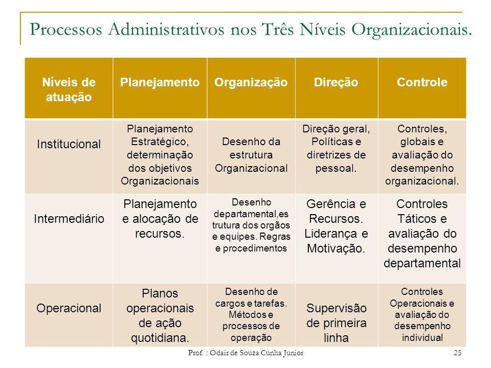 Processos Administrativos nos Três Níveis Organizacionais.