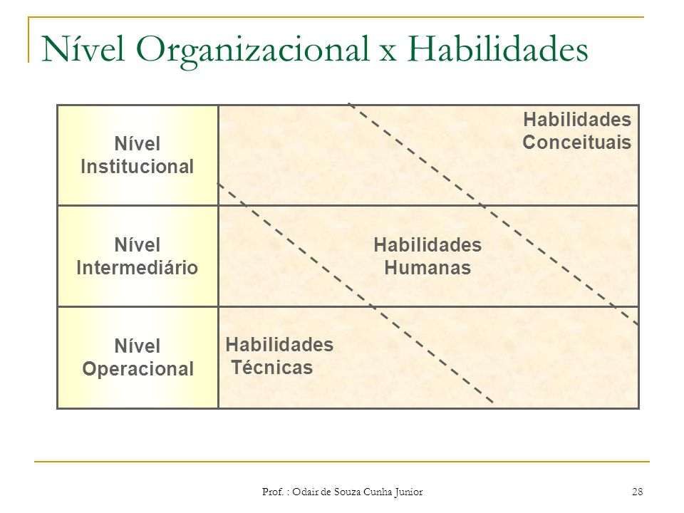 Nível Organizacional x Habilidades