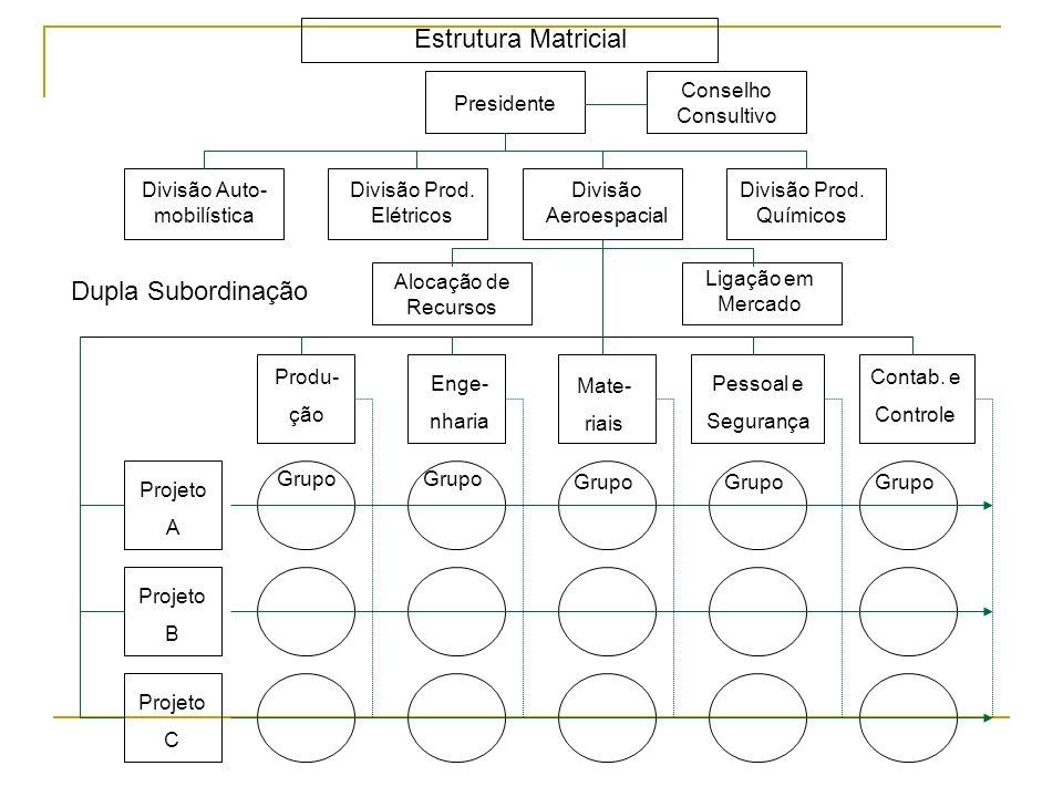 Estrutura Matricial Dupla Subordinação Conselho Consultivo Presidente
