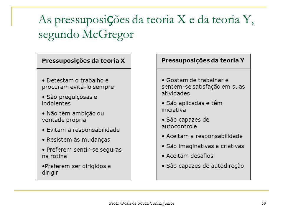 As pressuposições da teoria X e da teoria Y, segundo McGregor