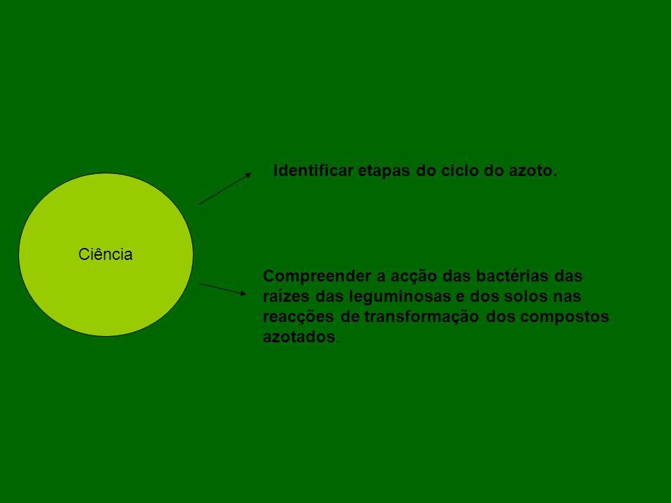Identificar etapas do ciclo do azoto.