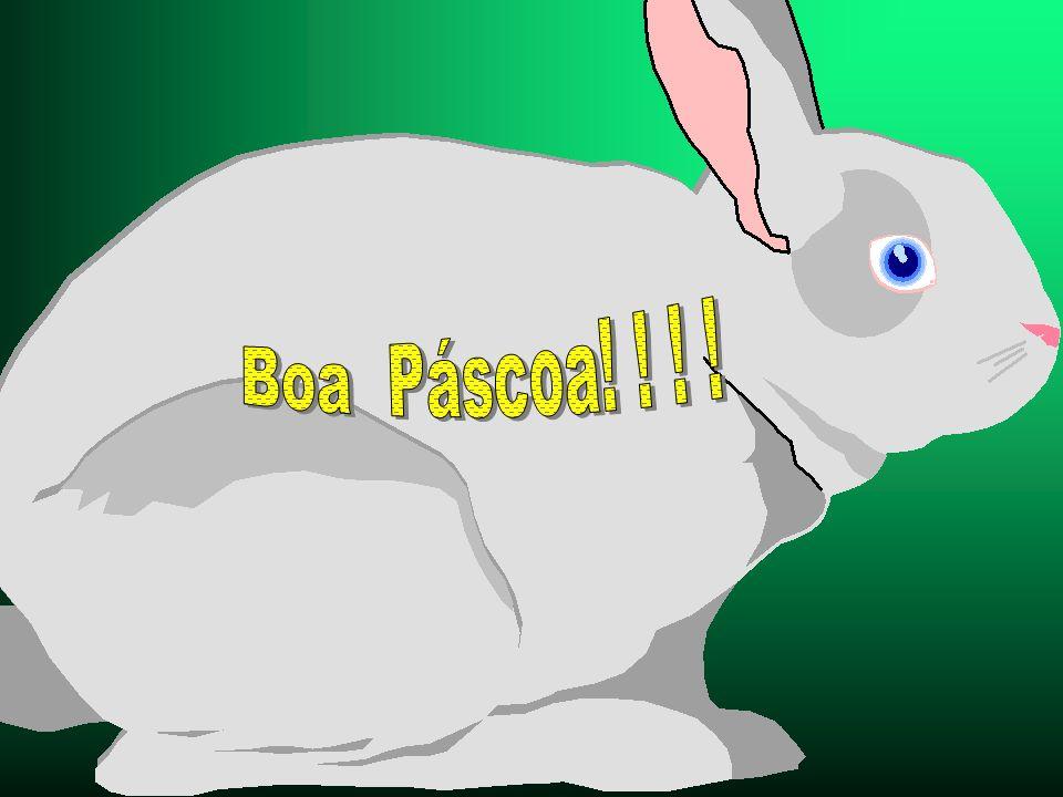 Boa Páscoa! ! ! !