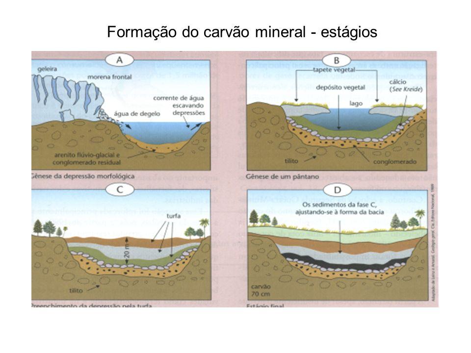 Formação do carvão mineral - estágios