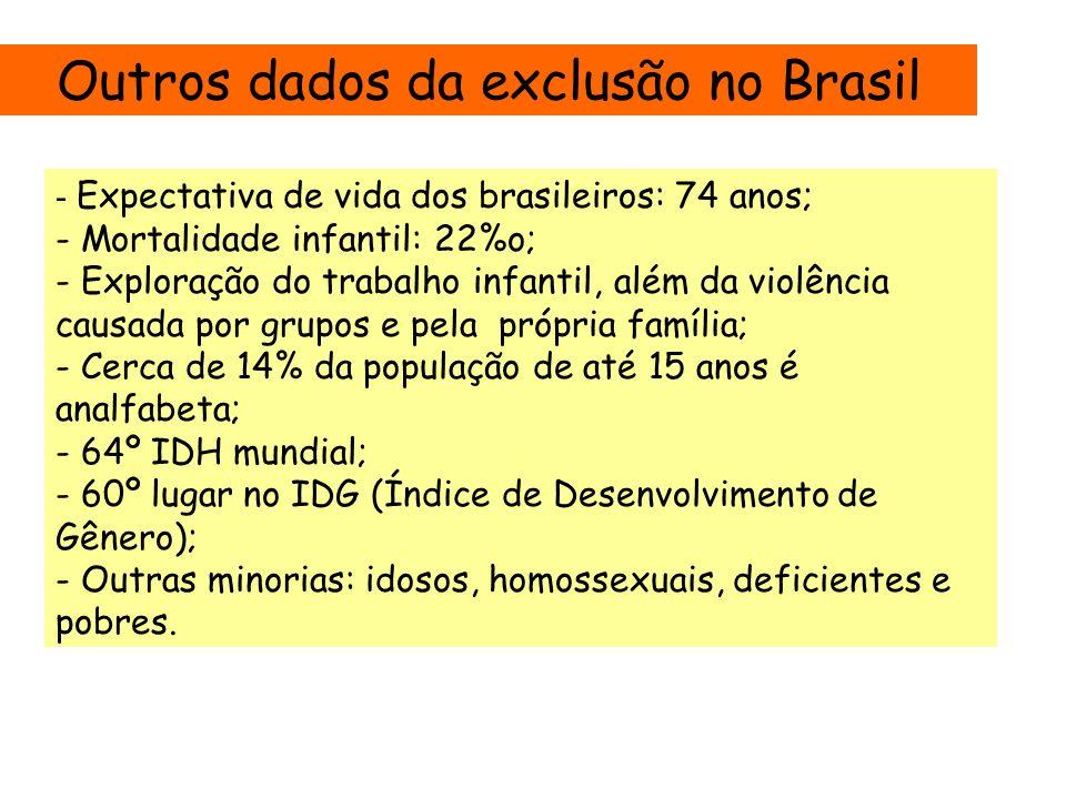 Outros dados da exclusão no Brasil