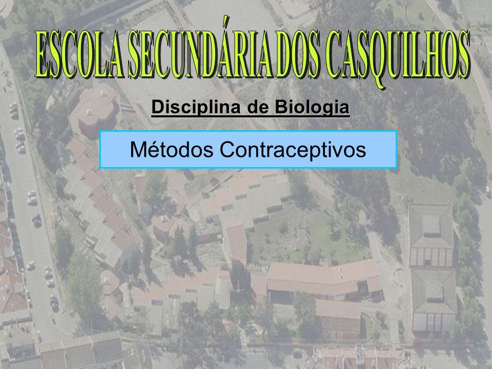 ESCOLA SECUNDÁRIA DOS CASQUILHOS