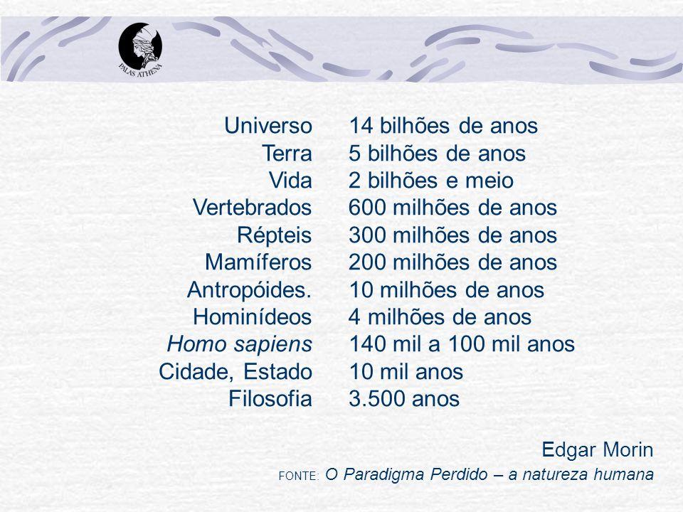 Universo Terra Vida Vertebrados Répteis Mamíferos Antropóides
