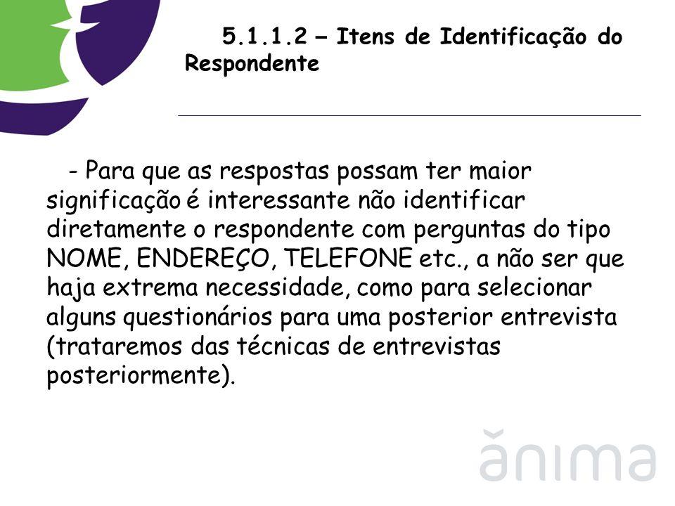 5.1.1.2 – Itens de Identificação do Respondente