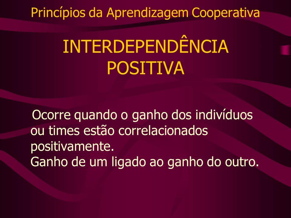 Princípios da Aprendizagem Cooperativa INTERDEPENDÊNCIA POSITIVA