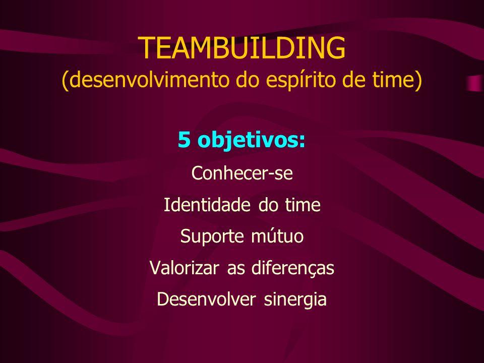 TEAMBUILDING (desenvolvimento do espírito de time)