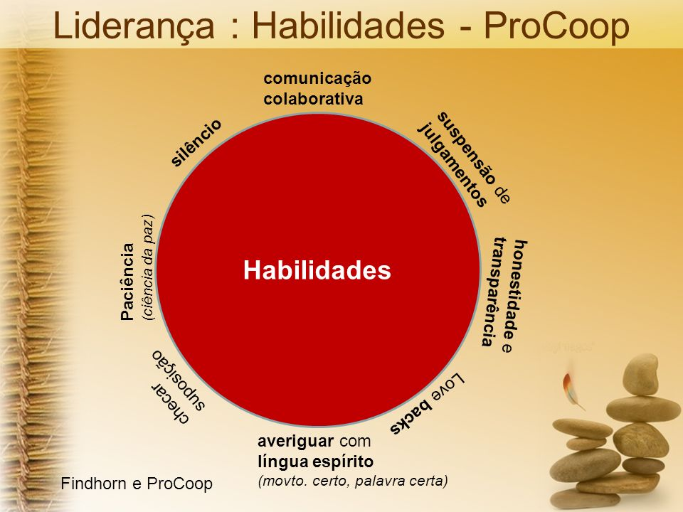Liderança : Habilidades - ProCoop