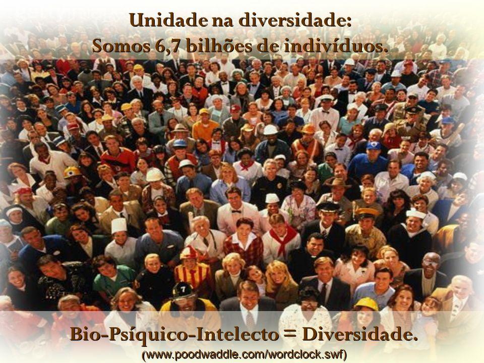 Unidade na diversidade: Somos 6,7 bilhões de indivíduos.