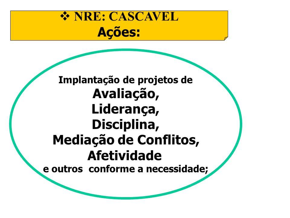 Implantação de projetos de e outros conforme a necessidade;