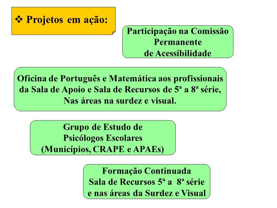 Projetos em ação: Participação na Comissão Permanente