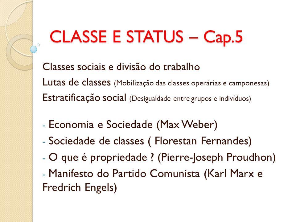 CLASSE E STATUS – Cap.5 Economia e Sociedade (Max Weber)