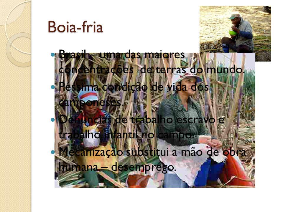 Boia-fria Brasil – uma das maiores concentrações de terras do mundo.