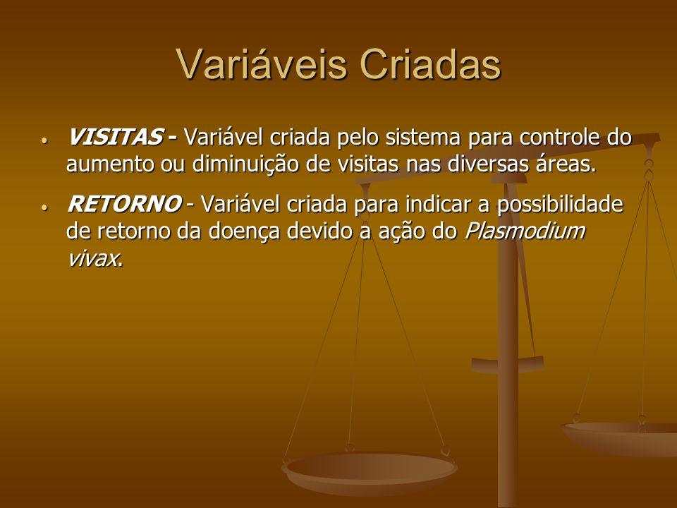 Variáveis Criadas VISITAS - Variável criada pelo sistema para controle do aumento ou diminuição de visitas nas diversas áreas.