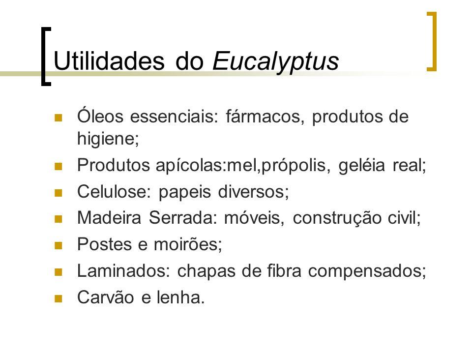 Utilidades do Eucalyptus