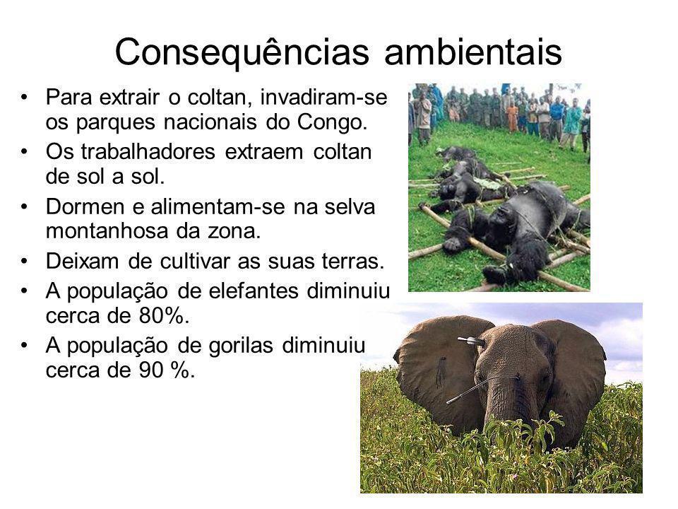 Consequências ambientais